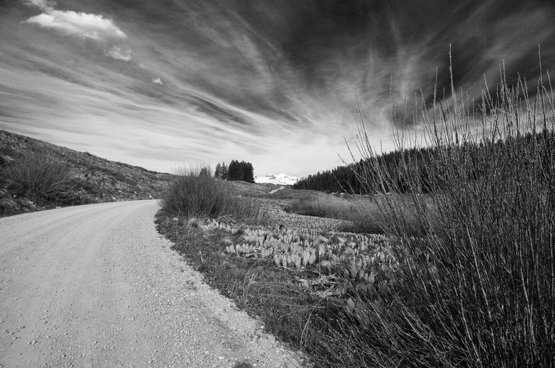 Landscape, road, Colorado, USA
