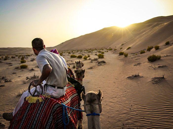 Man on camel in the desert