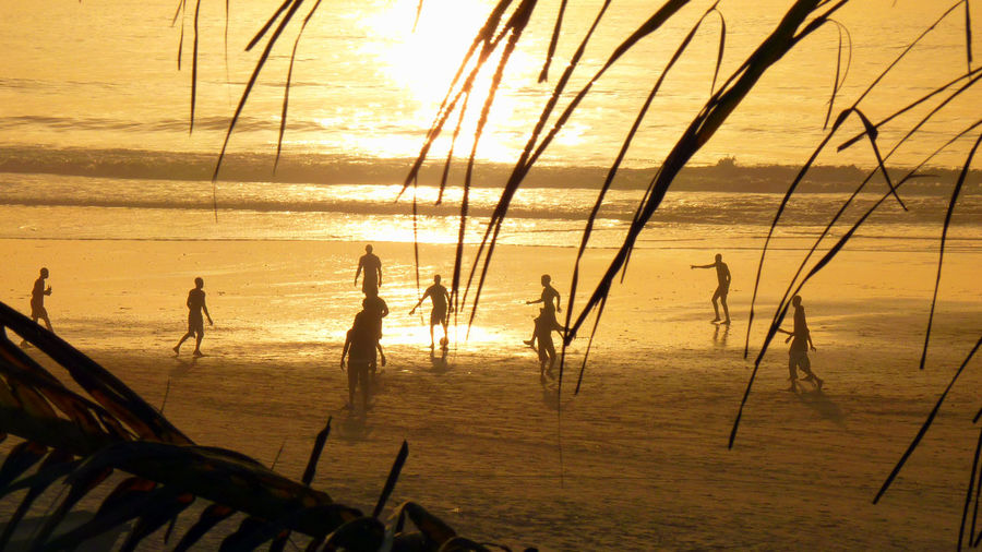 Africa Atlantic Atlantic Ocean Beach Childhood Coast Football Fun Gambia  Holiday Kololi Leisure Leisure Activity Lifestyles Light Palm Trees Silhouettes Smiling Coast Soccer Sport Sunset The Gambia Travel Vacations Western Africa