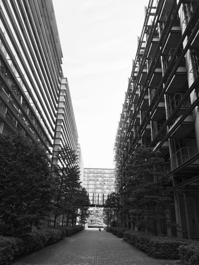 Black And White Urban Geometry Capture The Moment Building IPhoneography Black & White Architecture City Street City Landscape