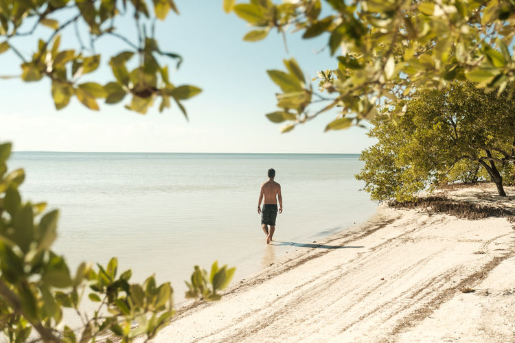 Caribbean Sea Mexico Nature Palm Tree Standing Swimming Tranquility Beach Blue Sky Caribbean Holbox Horizon Horizon Over Water Island Landscape Paradise Peaceful Sea Walking Water Waterfront