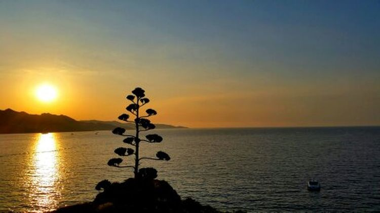 Couché De Soleil st florent corsica