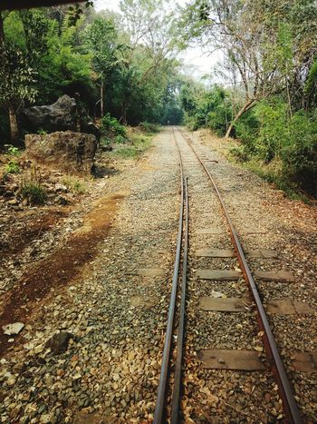 #track #awsm location #enjoy #fun #love #nature High Angle View Day Outdoors Railroad Track Wet Nature