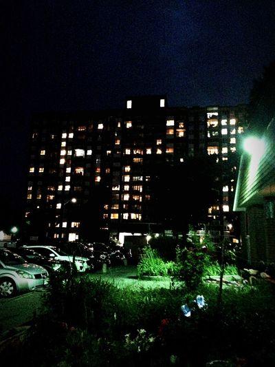 Night Life Neighborhood