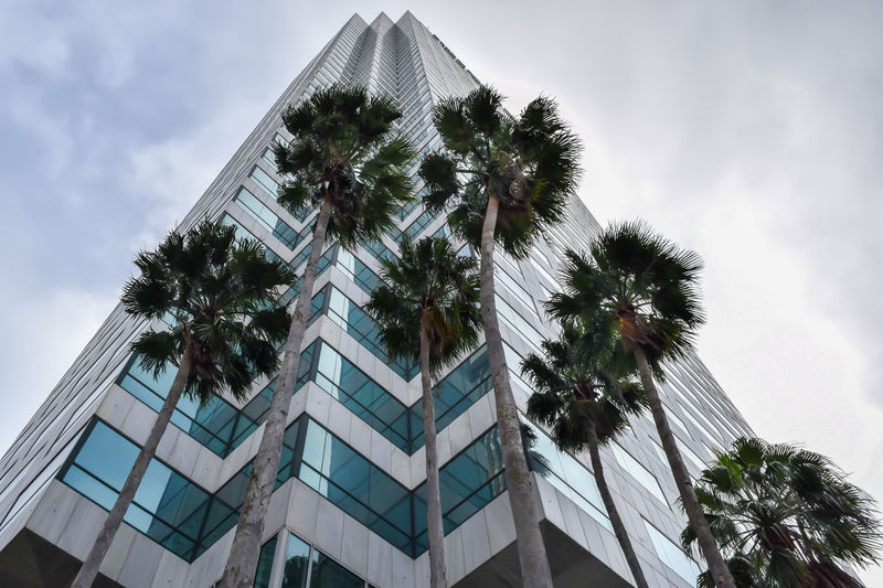 Architecture Architecture Architecture_collection Blane Arnold Blane Arnold Photography Building Building Exterior Built Structure City Cloud Cloud - Sky Day Glass - Material Growth Low Angle View Modern Office Building Palm Tree Sky Skyscraper Tall Tall - High Tampa Tower Tree