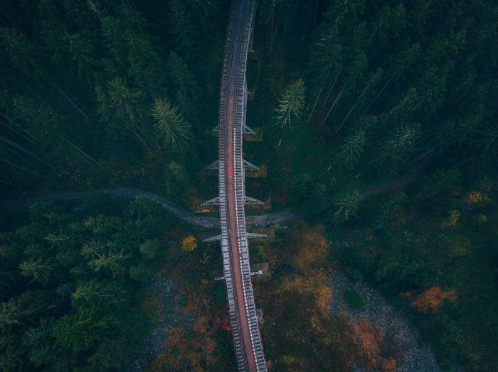 Ziemesthalbrücke Germany Aerial Shot Drone  EyeEmNewHere Trees Aerial Photography Aerial View Beauty In Nature Bridge Dji Dronescape Foggy Forest High Angle View Landscape Mountain Nature No People Outdoors Pine Tree Railroad Scenics Tranquil Scene Tranquility Tree Woods Perspectives On Nature EyeEmNewHere