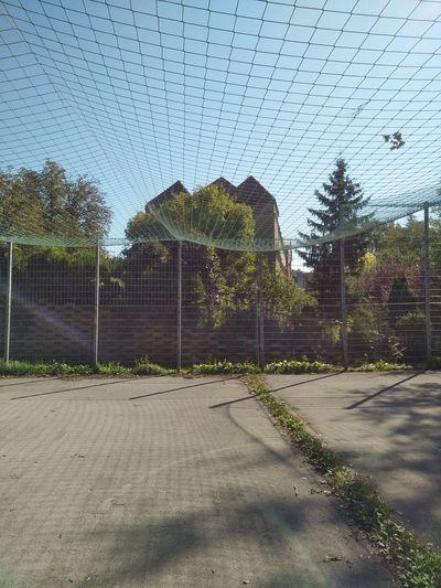 Basketball Basketball Hoop Netz Basketball Court Day Net No People Outdoor Outdoors Sommer Sport Summer