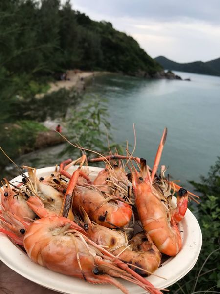 Are you hungry ? The river lobster making grill. EyeEm Selects Seafood Food And Drink Food Water Crustacean Freshness Close-up Beach Focus On Foreground Lobster Mountain Sea Outdoors