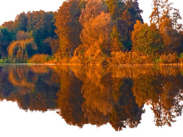 Tükröződés Nature ősz Travel Reflection IPhone Edithphoto