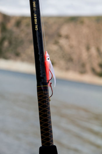 A salmon fishing squid attached to a fishing rod with a lake and mountain in the background. Fishing Rod Recreation  Fishing Fishing Lure Lake Recreational Pursuit Salmon Fishing Sport Water