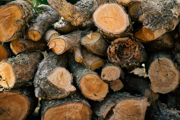 Wood Texture Wood - Material Wood