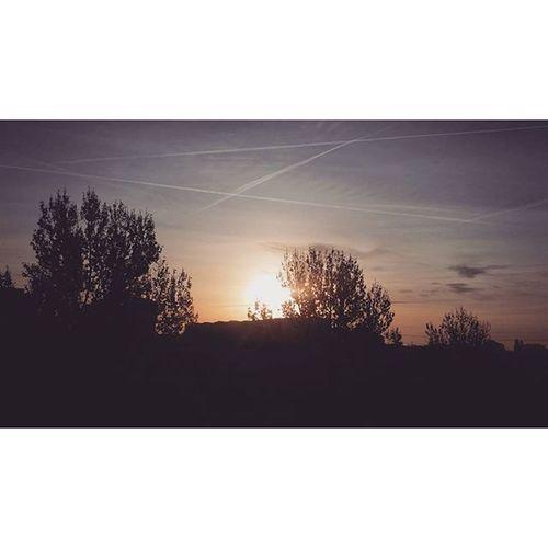 ☀ Sun Sunny Sunnyday Hashtagsgen sunnydays sunlight light sunshine shine nature sky skywatcher thesun sunrays photooftheday beautiful beautifulday weather summer goodday goodweater instasunny instasun instagood clearskies clearsky blueskies lookup bright brightsun @hashtags.like