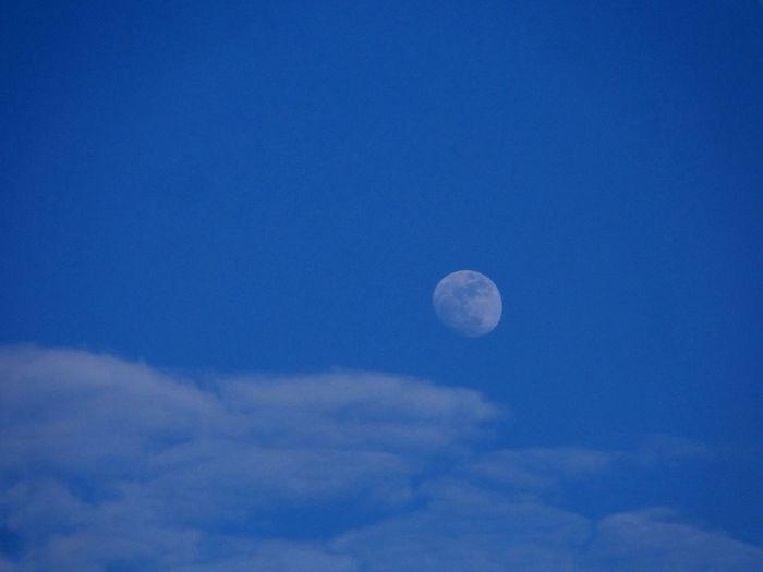 Good morning world... Shoot The Moon  The Purist (no Edit, No Filter) Daytime Moon Moon