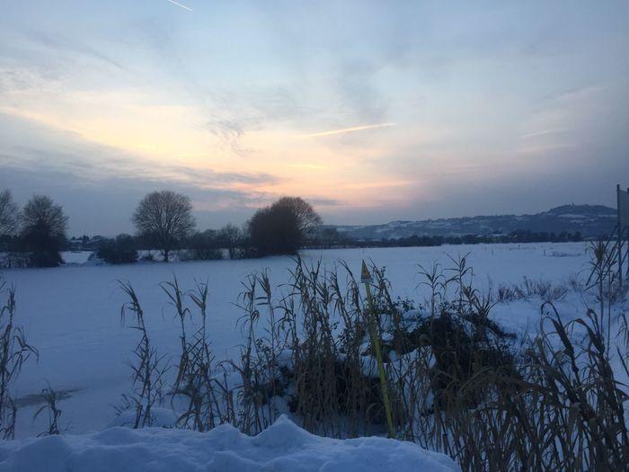 Cold Temperature Winter Snow Weather Nature Beauty In Nature Scenics