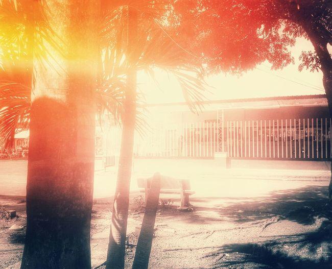 《No matter where you are His grace will find you.》《Sin importar donde estés, Su gracia te encontrará.》 Grace God Sun Sunlight Dios Gracia Creative Light Rainbow