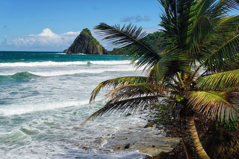 Carib Sea Beach Scenics Water Beauty In Nature Tranquil Scene Sand No People Wave Tropical Climate Martinique Paradise Caribbean
