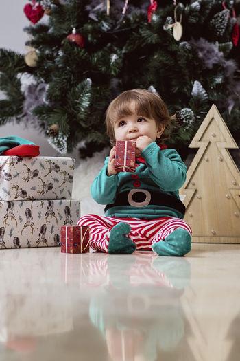 Portrait of cute boy sitting in christmas tree