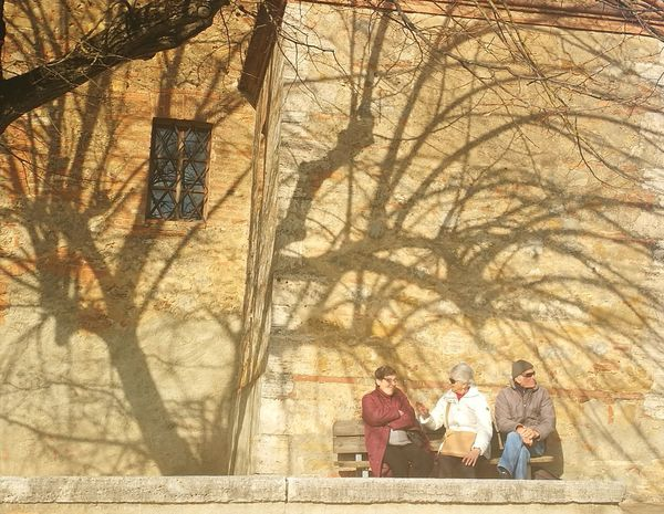 ombre Contemplazione Alone Tree Quadronatural All'ombra Del Fievole Sole Tree Togetherness Sitting Men Shadow Women Group Of People Historic