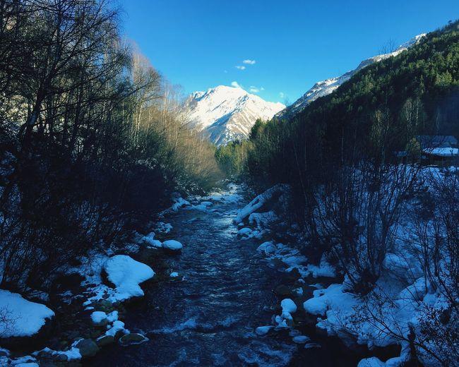 Nature Winter Snow Mountain Russia