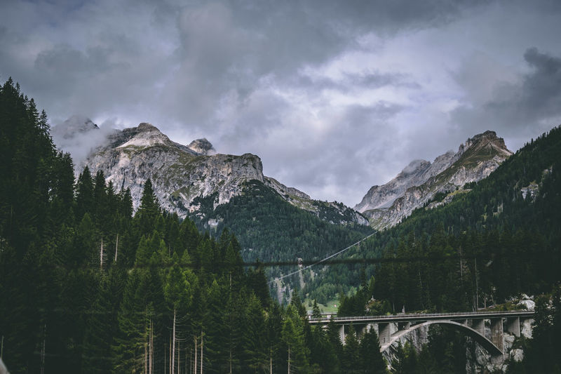 Nature Switzerland Swiss Woods Trees Bridge Alps Mountains Mood Nature Tree Mountain Forest Sky Cloud - Sky