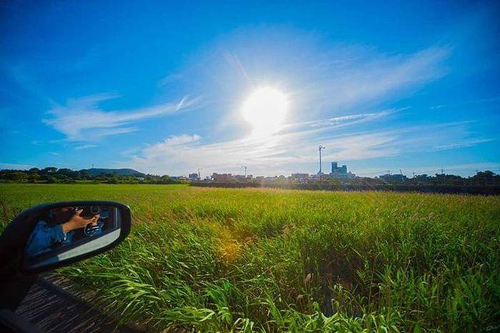 여행가고싶다ㅏㅏㅏㅏㅏㅏㅏ 제주도 여행 풍경 일상 사진 니콘D610 Nikon 광각렌즈 제주 Jeju Photographer_suhyeon