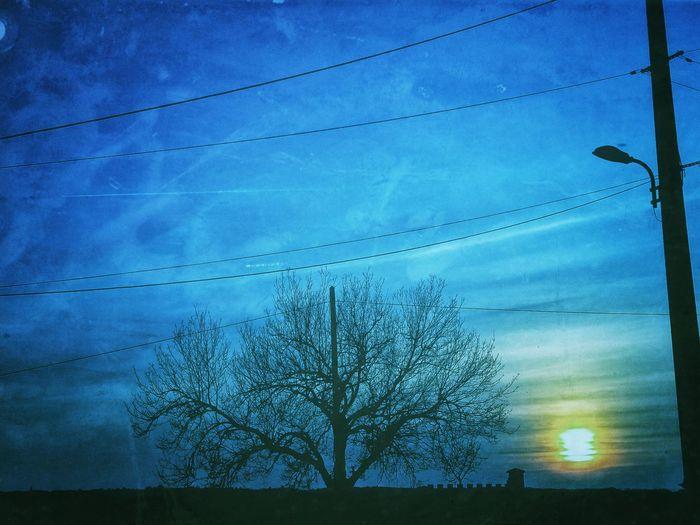 Snapseed Retro Coucherdesoleil Ciel Bleu Arbre Soleil Sunset Puestadelsol Pordosol Tramonto Sonnenuntergang Yuhi Sky Cielo Ceu Liindo! HimmelTengoku Baum Albero Tree Arvore Tsüri Arboles