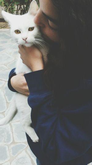 Kitty Love♥ Bianca