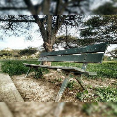 Título: Luego espero. Lugar: Parque del este. 03/07/15 Instasquare Pic Photo Photooftheday Nature Park Barquisimeto