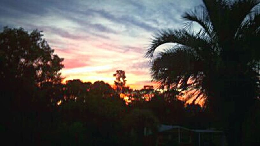 Beautiful Florida morining sky