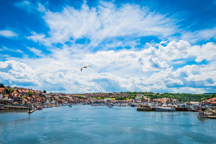 North Yorkshire, Whitby port, uk. Architecture Beauty In Nature Bird Blue Building Exterior Built Structure City Cityscape Cloud - Sky Day Flying Harbor Landscape Nature Nautical Vessel No People Outdoors River Scenics Seaside Sky Town Water Waterfront