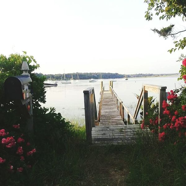 ⛵⛵⛵ Landscape Nature Boats Flowers Ocean View Summer Osterville