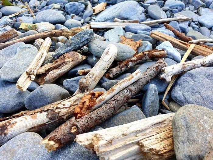 driftwood at