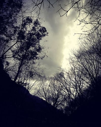 Sky Nature Cloud - Sky Beauty In Nature Water Shadows & Lights Dark Blac&white  Beauty Colors Romantic No Filter Nature Heaven Illuminated Dramatic Sky Cloudscape Winter Time Blue And Grey Sky Outdoors Sweet Moments Heart Trees Beautiful Day