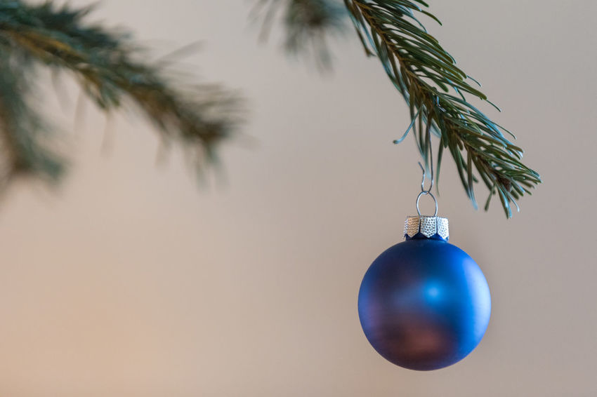 Close-up of blue Christmas bauble hanging on tree Green Color Sphere Tradition Blue Branch Branch - Plant Part Celebration Celebration Event Christmas Christmas Decoration Christmas Ornament Christmas Tree Close-up Cultures Day Decoration Focus On Foreground Glass - Material Hanging Indoors  No People Selective Focus Simplicity Single Object Tree