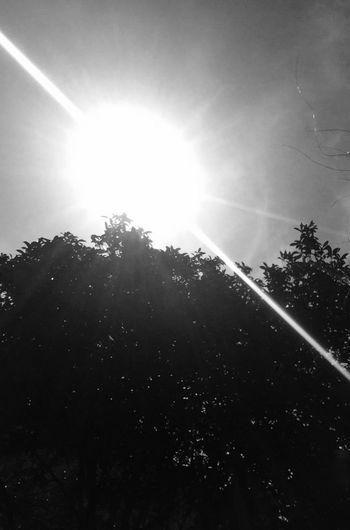 Sunshine Check This Out Enjoying Life Enjoying The View Good Morning Hanging Out Blackandwhite Taking Photos alone not lonely