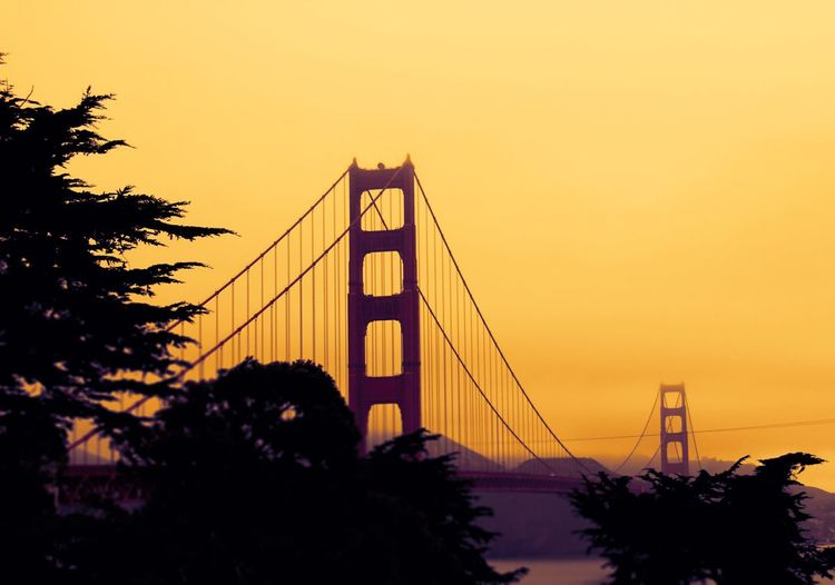 Suspension Bridge Connection Engineering Sunset Transportation Bridge Architecture Built Structure Tree Sky Travel Destinations Outdoors Silhouette Travel No People Chain Bridge City Nature Clear Sky San Francisco Golden Gate Bridge Sunset_collection Sunset