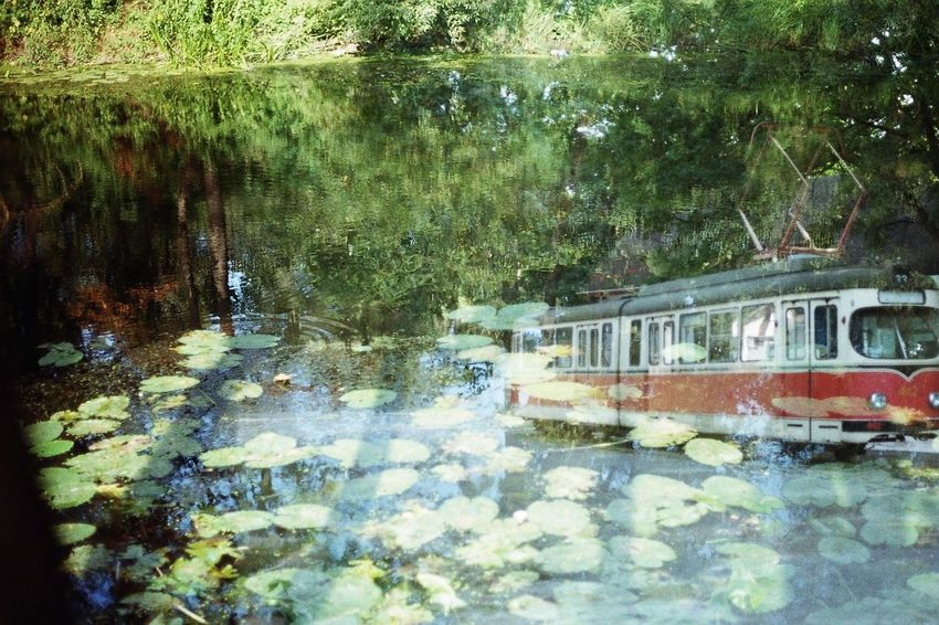Water Reflection Nature Russia Tram 35mmfilmphotography