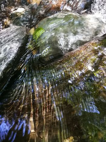 Water Tranquility Beauty In Nature Outdoors Nature Low Angle View Day No People River Moments Catalonia Montseny