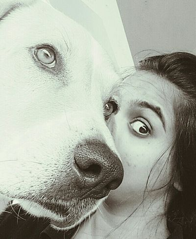 Mighty Dog Dogs Of EyeEm EyeEm Best Shots Togetherness Friendship EyeEm Love HomeSweetHome🏠 Seeing The World Differently One Eyed Webelongtogether Blackandwhite Photography Animal Eye Eye Eye Color Snout Animal Nose This Is Family Visual Creativity Summer Exploratorium The Portraitist - 2018 EyeEm Awards The Still Life Photographer - 2018 EyeEm Awards