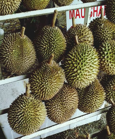 'Bila durian datang, sarong jatuh' (when durians fall, your sarongs will fall after). This king of fruits is claimed to be viagra fruit. Go try... Durians Ilovedurian
