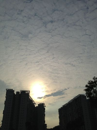 WeatherPro: Your Perfect Weather Shot Morning Sky