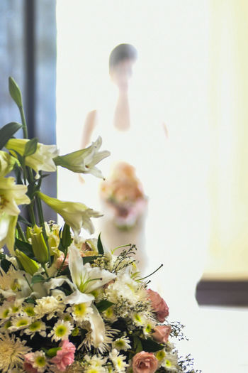Growth Plant Nature Flower Day Indoors  Close-up Fragility No People Freshness Wedding Bride Bokeh People Beauty Women Young Women One Person Beautiful Woman Nikon Nikon D500 Standing