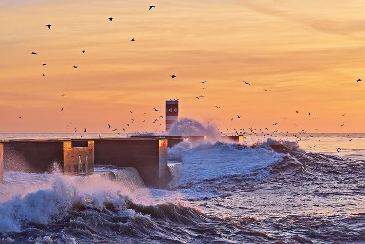Scenic sunset with lighthouse and strong waves of ocean and flying seagulls in dramatic sky