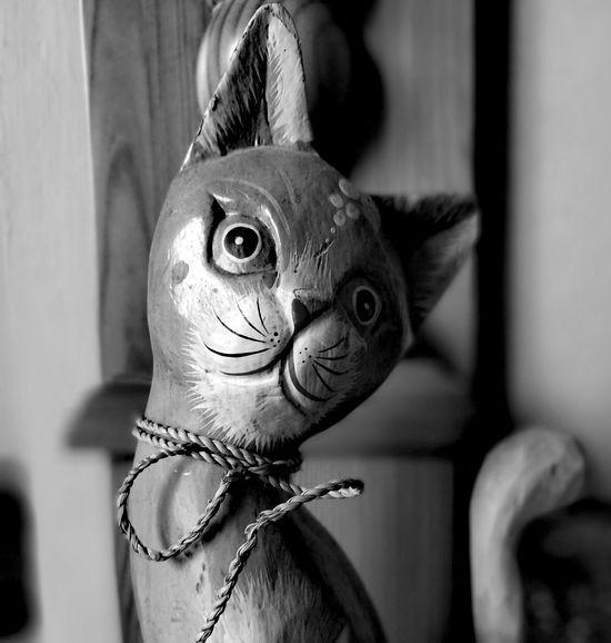 Animal Indoors  Close-up Black White Cat Kitty Ornaments Wiskers String Eyes Ears EyeEmNewHere EyeEm Gallery Eyeemireland