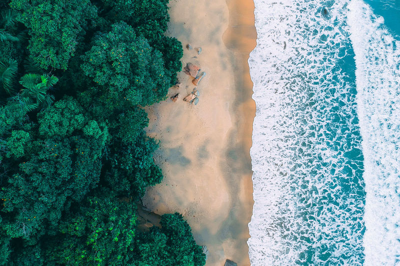 Sea Water Nature Beauty In Nature Day Real People Land High Angle View Green Color Lifestyles Leisure Activity One Person Beach Men Outdoors Tranquility Plant Scenics - Nature