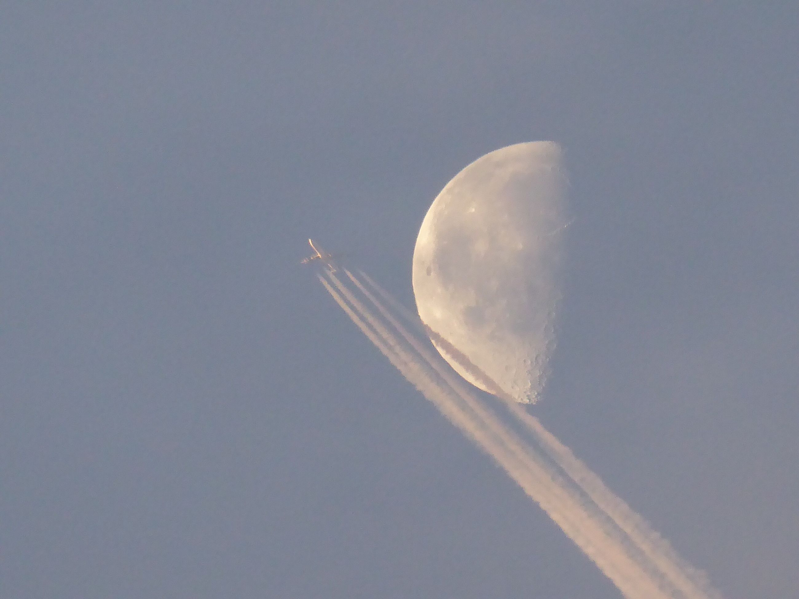 flying, low angle view, airplane, no people, clear sky, transportation, nature, sky, outdoors, moon, day, beauty in nature, vapor trail, close-up, astronomy