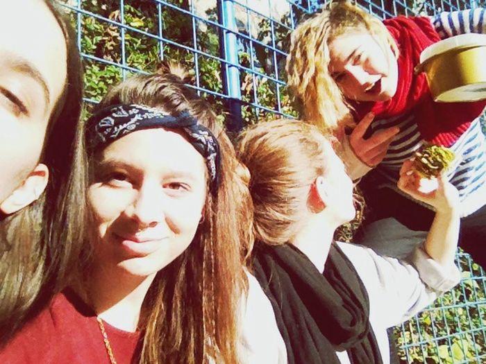 Sunshine? School Class Friends Sunshine