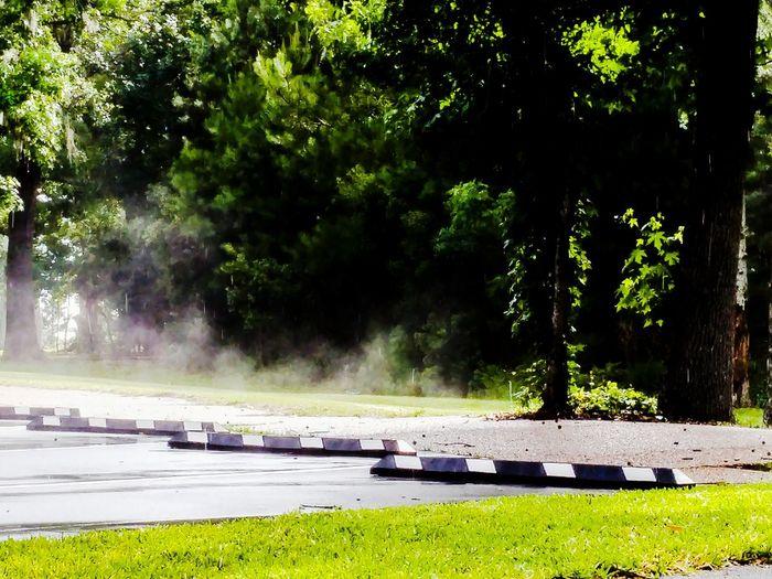 Steam rising