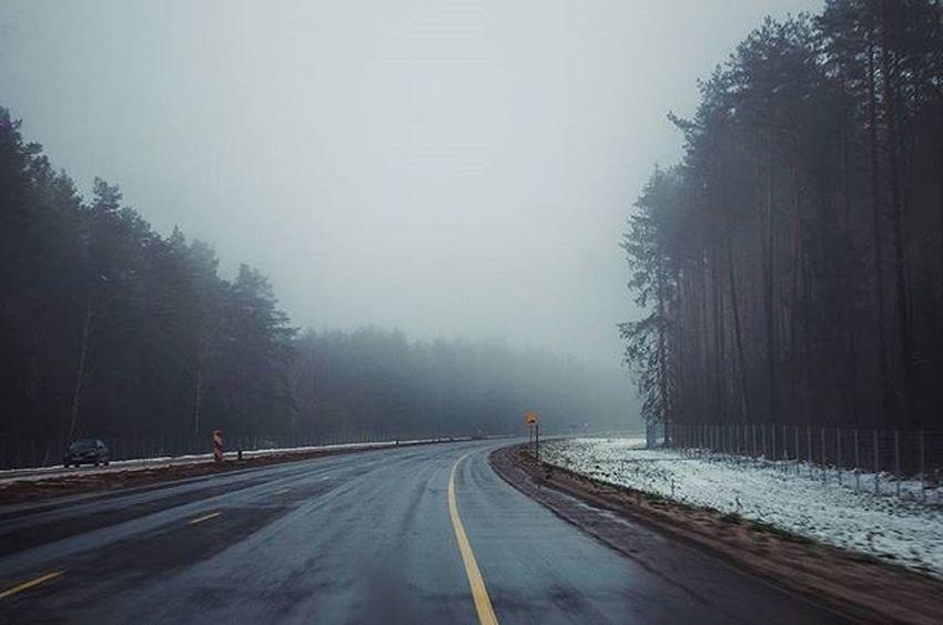 Road Roads Fog Travel Morning Nikon Nikon_photography_ Photo Friday Inmove Trees Turn