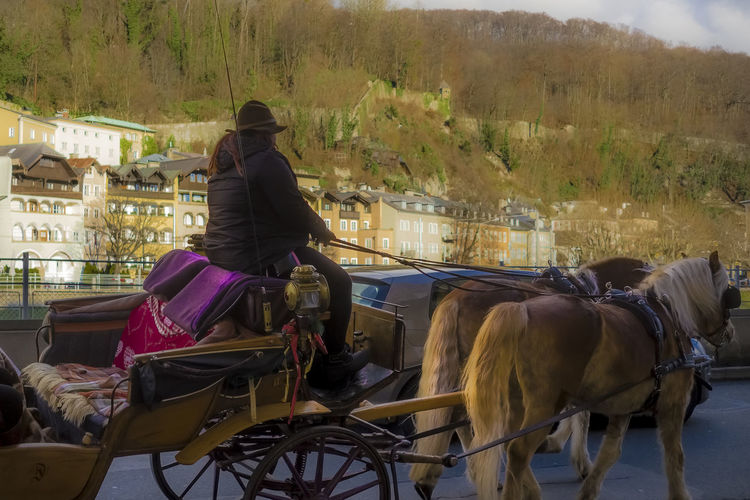 Rear view of woman riding horse cart